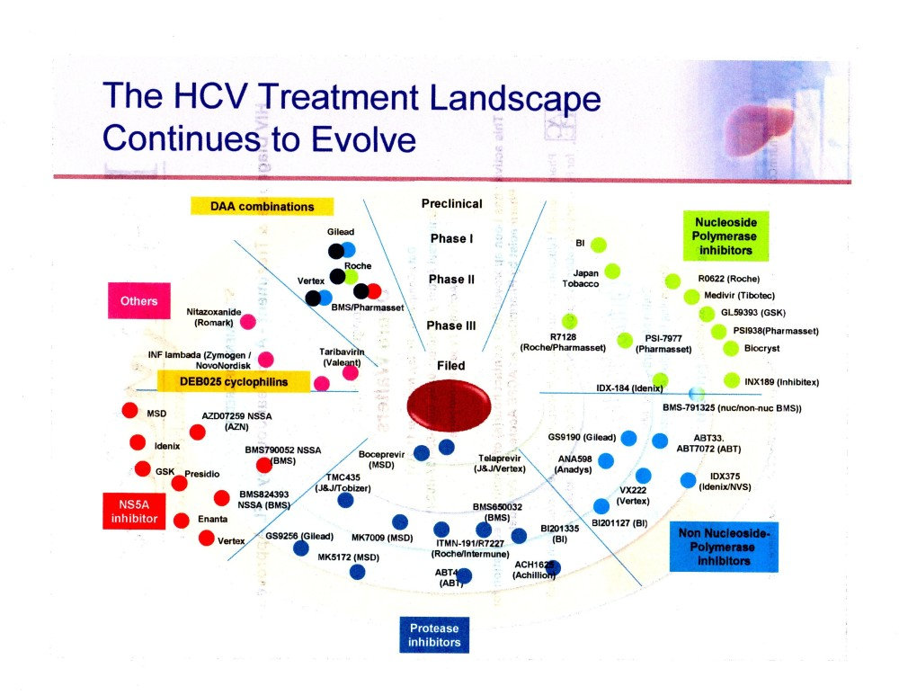 Hepatitis C Research:  What's a Phase and  How Can We Get through it Faster? (2/3)